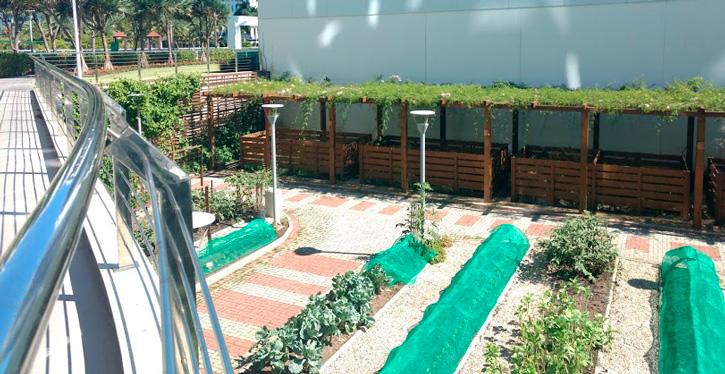 Condominio Brava Horta Site